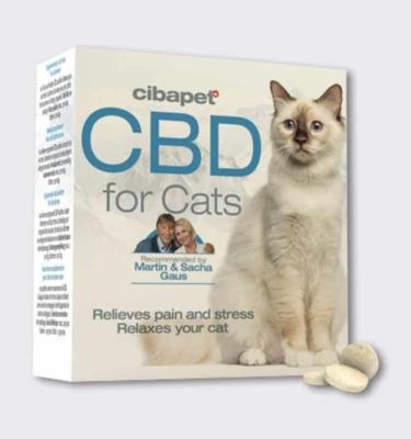 cbd pastilles for cats boxandpills